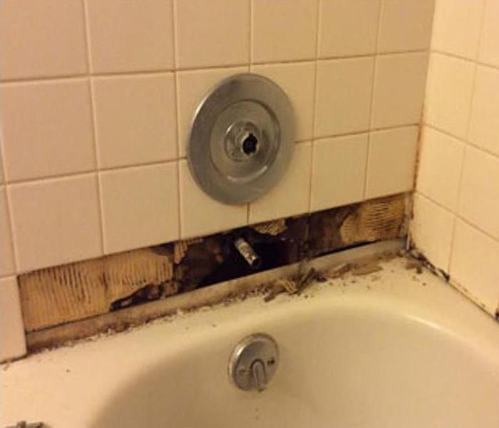 Mold In Canton Bathroom Before