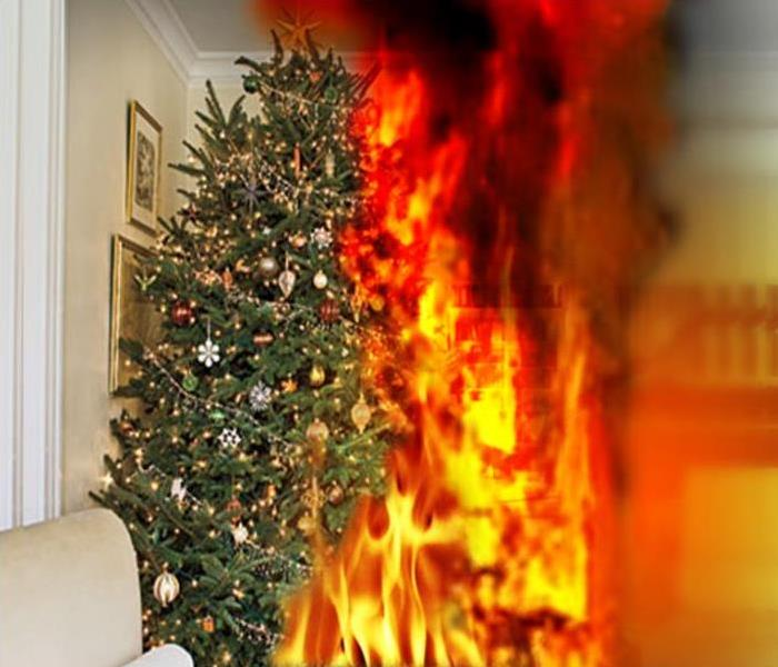 Fire Damage Holiday Fire Hazard - Tree