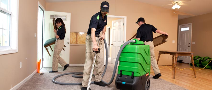 Westwood, MA cleaning services